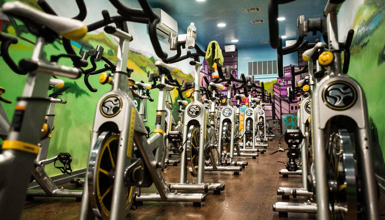 Evolution Fitness | Newark, NJ